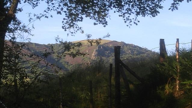 A Hillside near Pruines