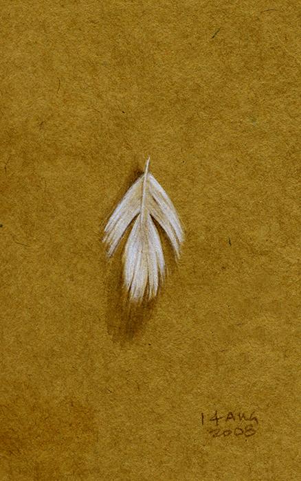 pillow_feather.jpg