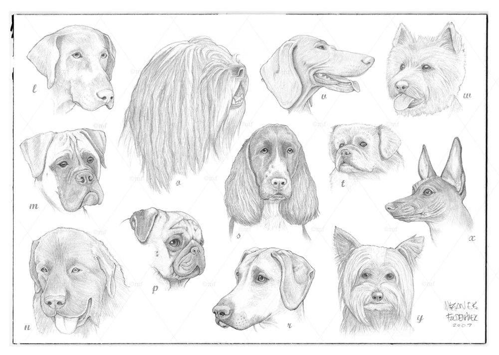 dogsL-Z.jpg