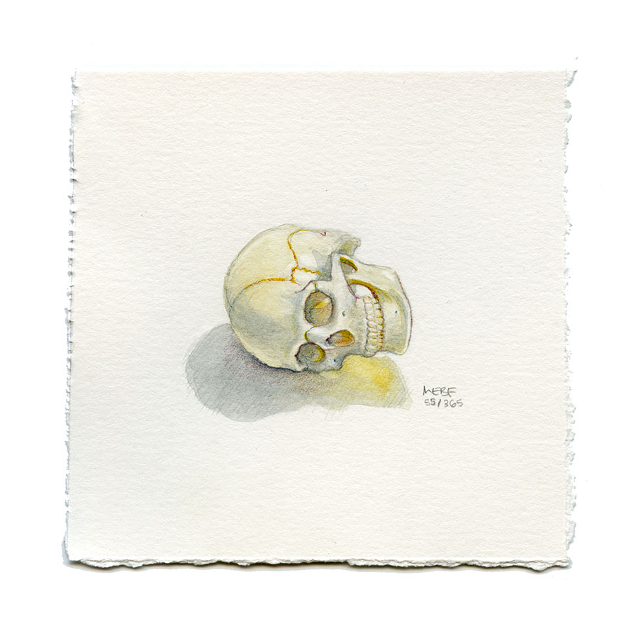 Suggested by Heather J. | Watercolor, verithin colored pencil