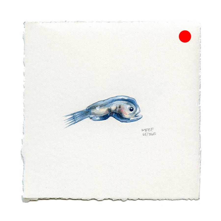 draw68_anglerfish(SOLD).jpg