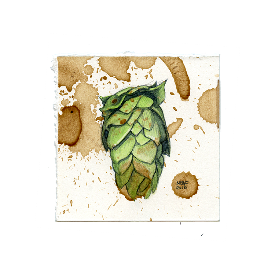 beer-stained_hops001.jpg