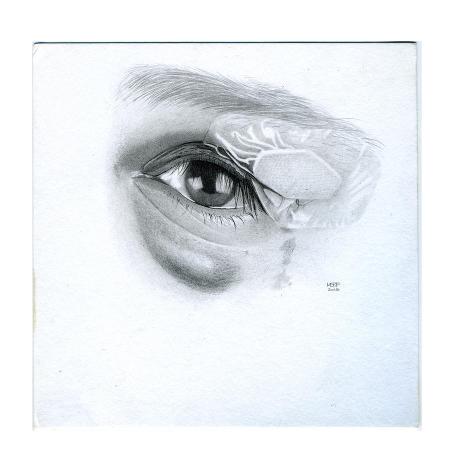 eye14.jpg