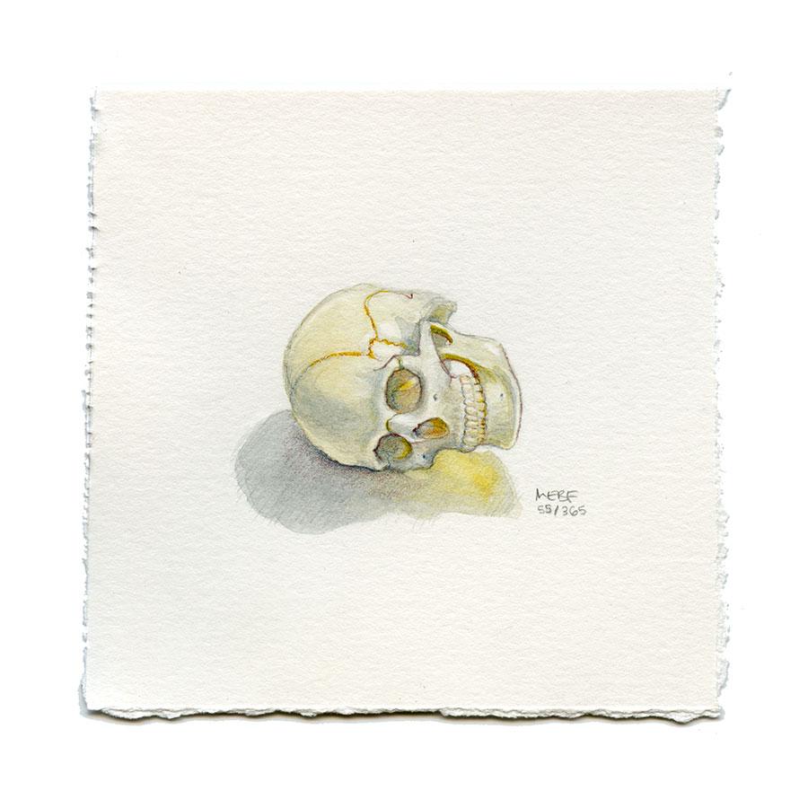 draw55_skull.jpg