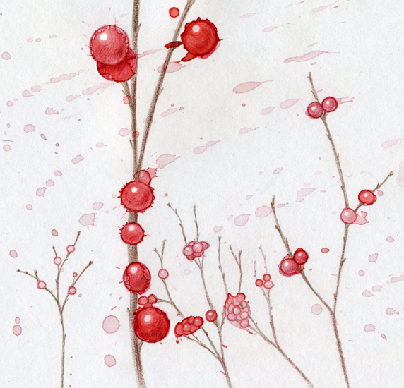 winter_berries.jpg