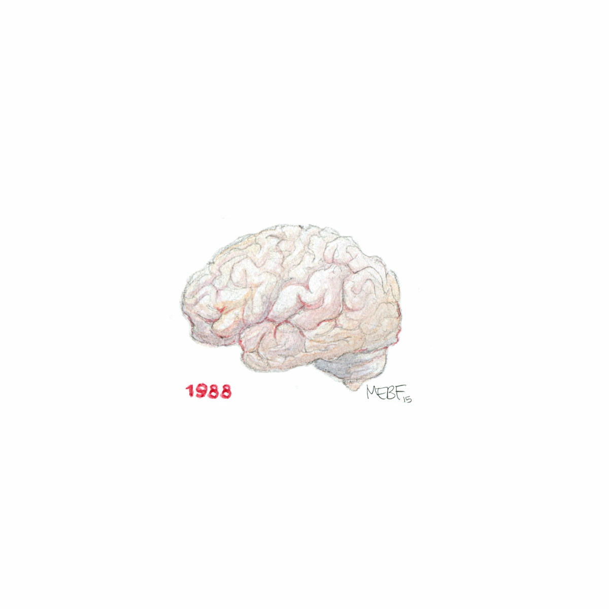 brain88.jpg