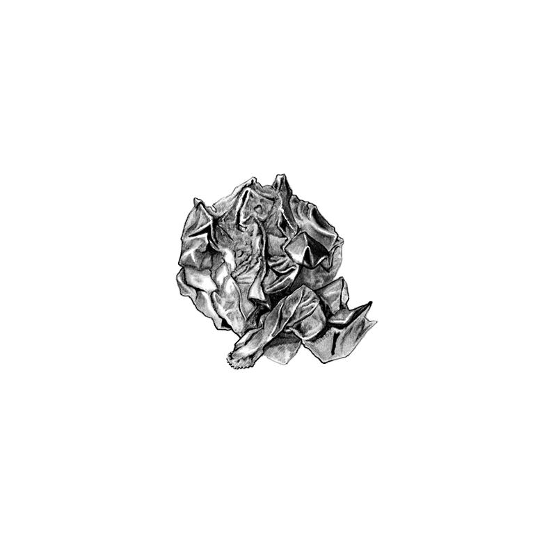 aluminum_foil.jpg