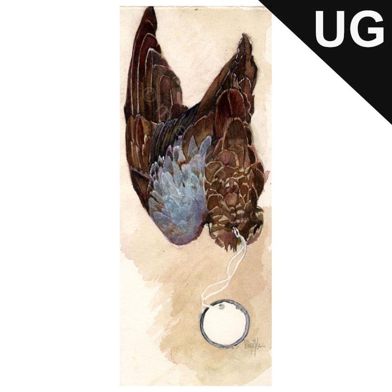 wing_specimen_002.jpg