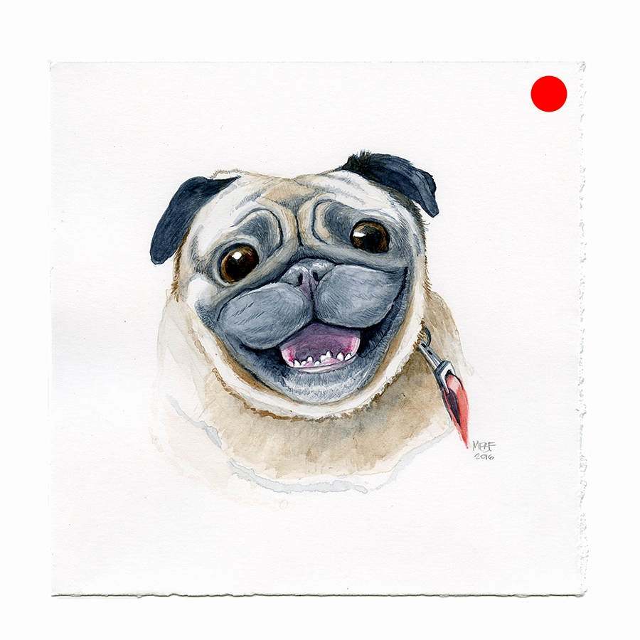 happy_pug_face001.jpg