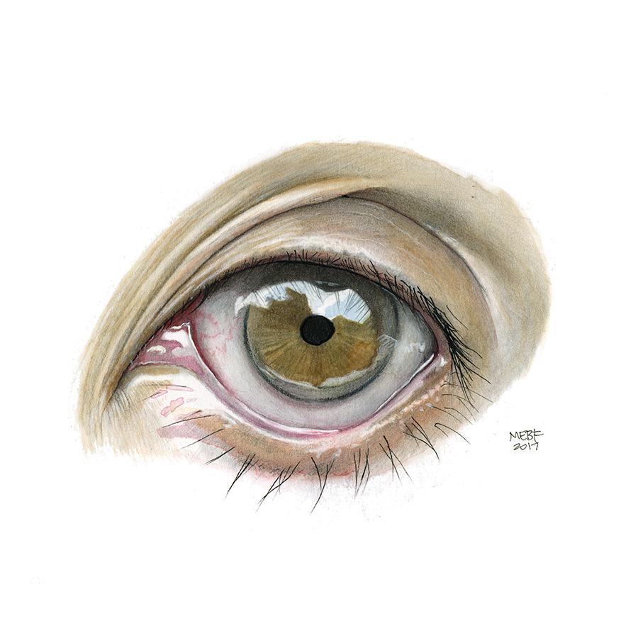 watercarbon_eye7.jpg