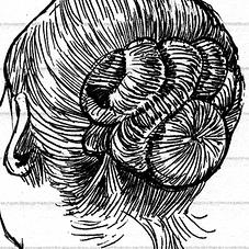 HAIR+FUR -