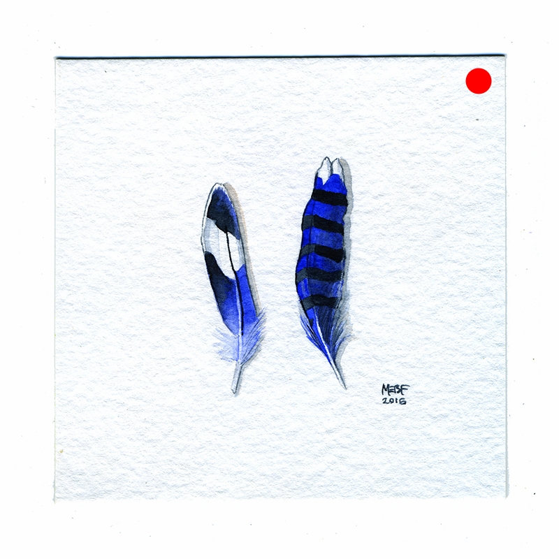 2_blue_feathers.jpg