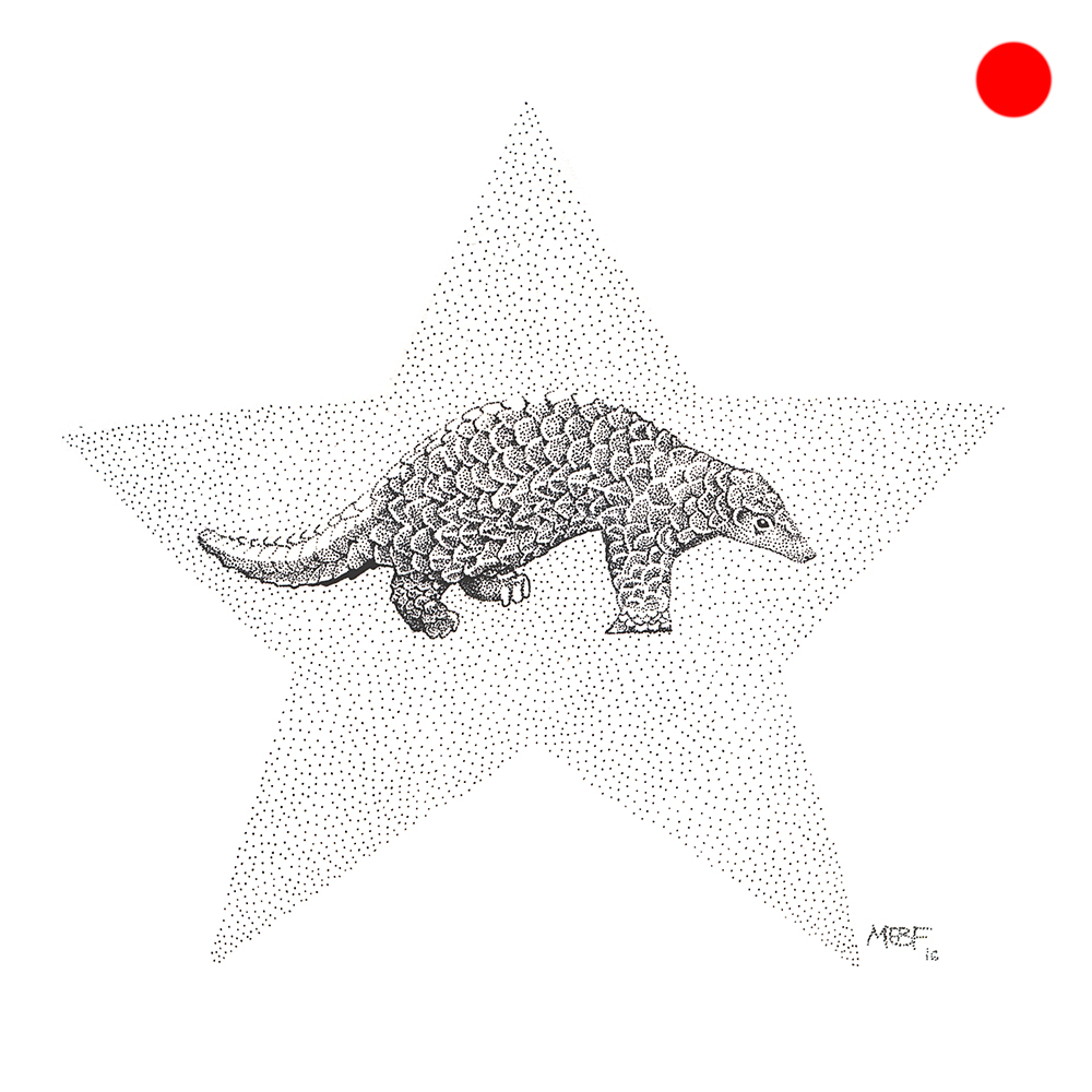 dot_pangolin(SOLD).jpg