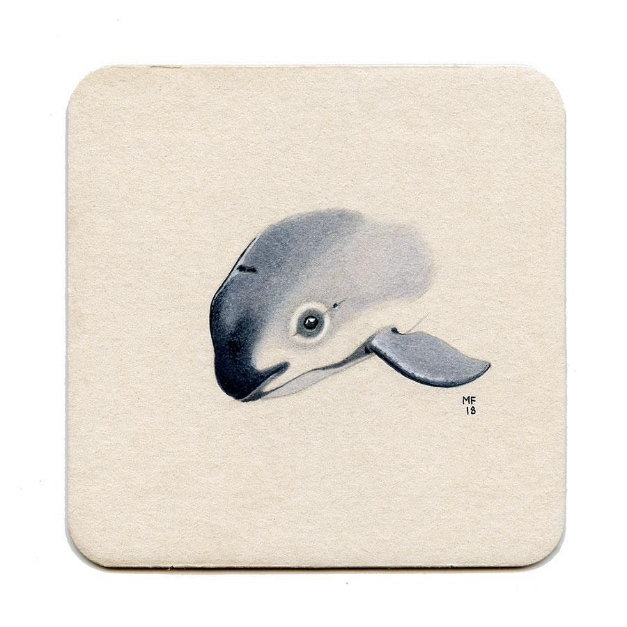 365_123(vaquita_whale)001.jpg
