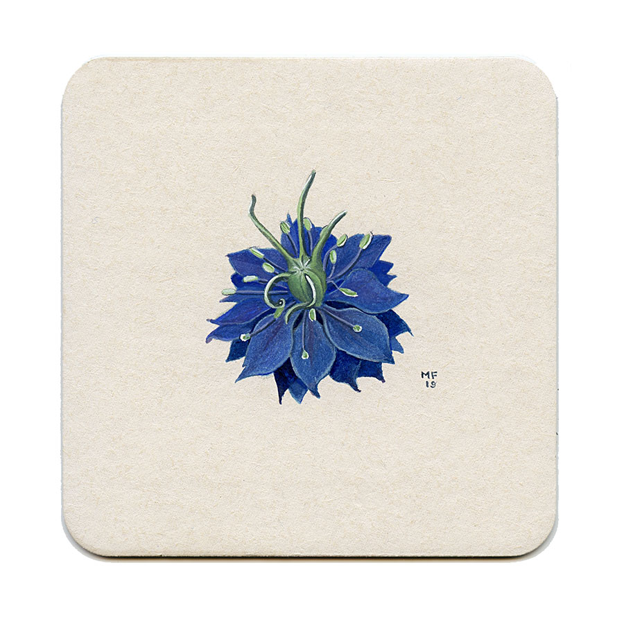 Blue Nigella Flower