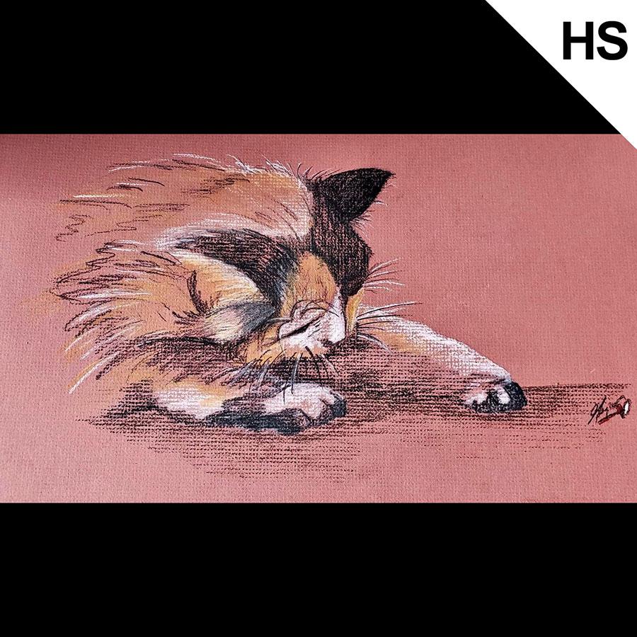 cat_pawing(HS).jpg
