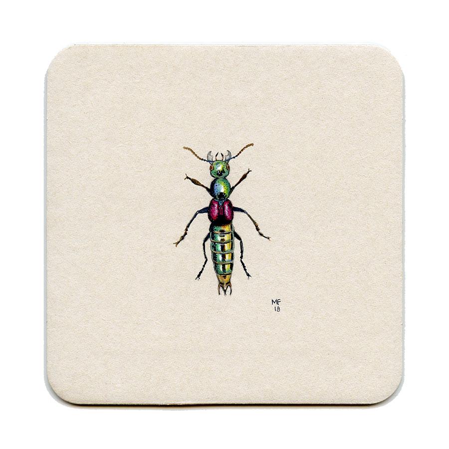 365_207(shiny_beetle)001.jpg