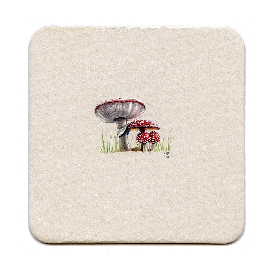 365_31(amanita_mushroom)001.jpg