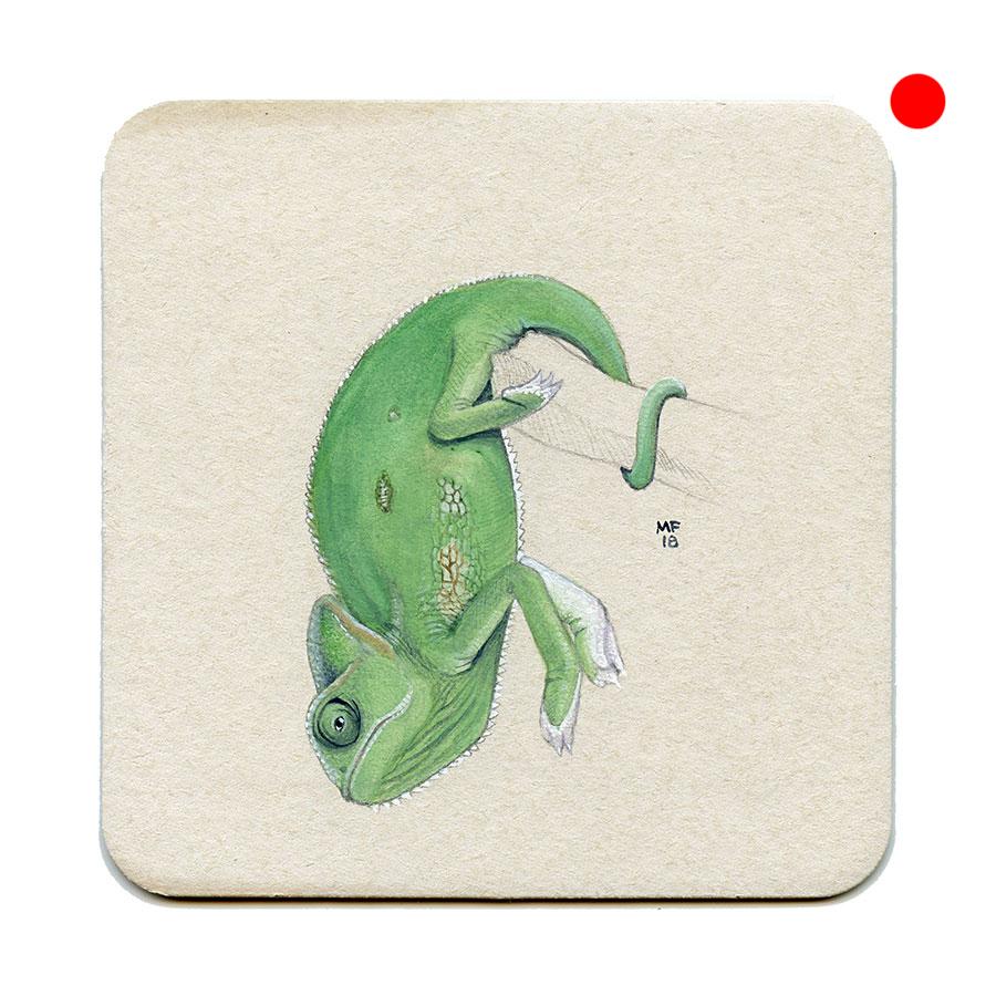 365_249(chameleon)001.jpg