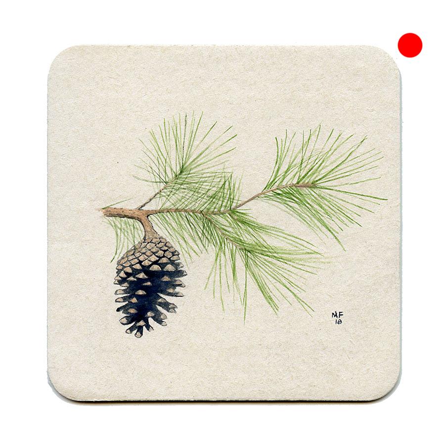 365_248(pine)001.jpg