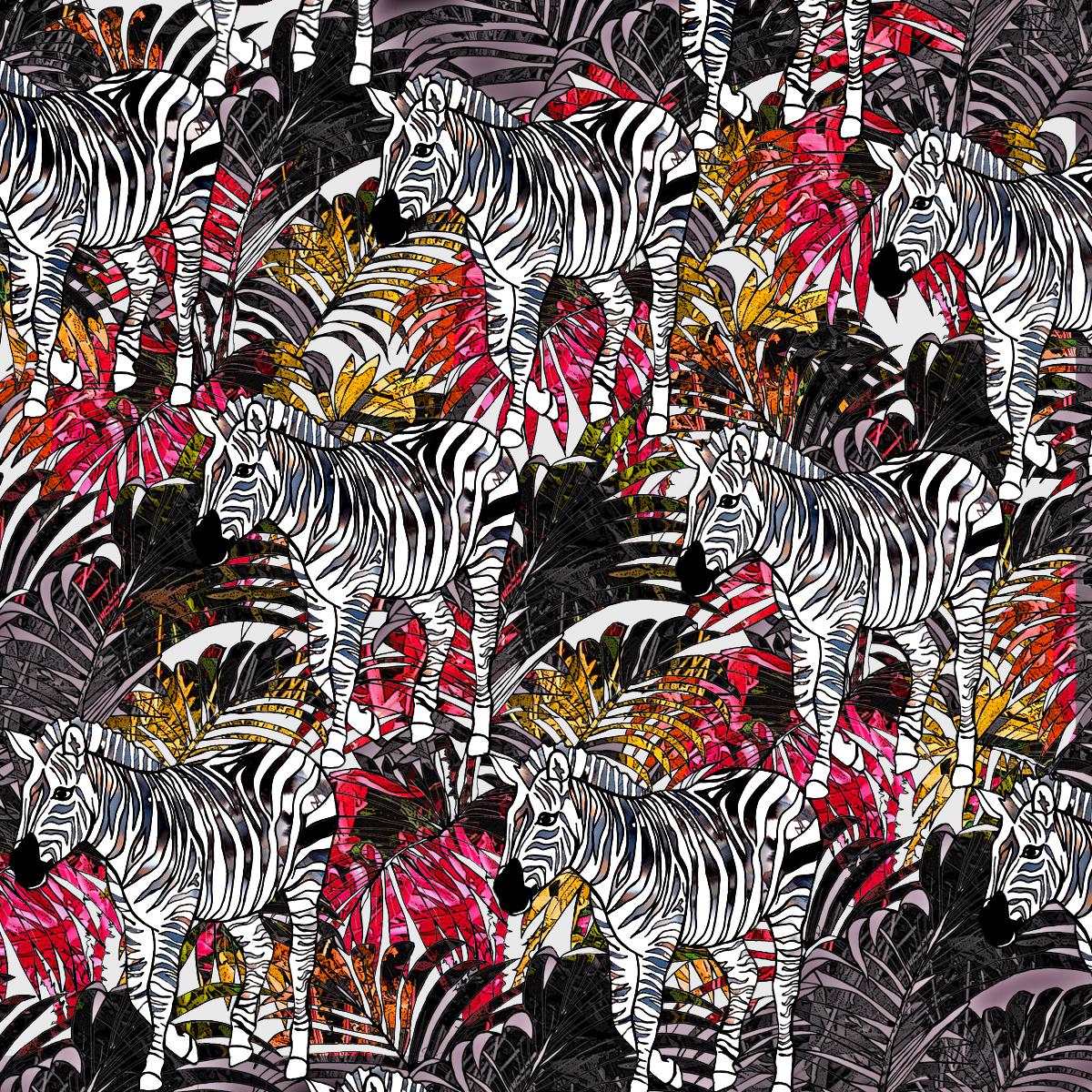 zebra tropic 2.jpg