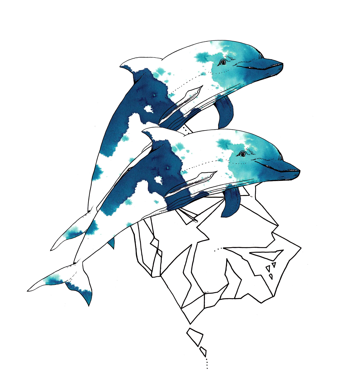 The Dolphins.jpg