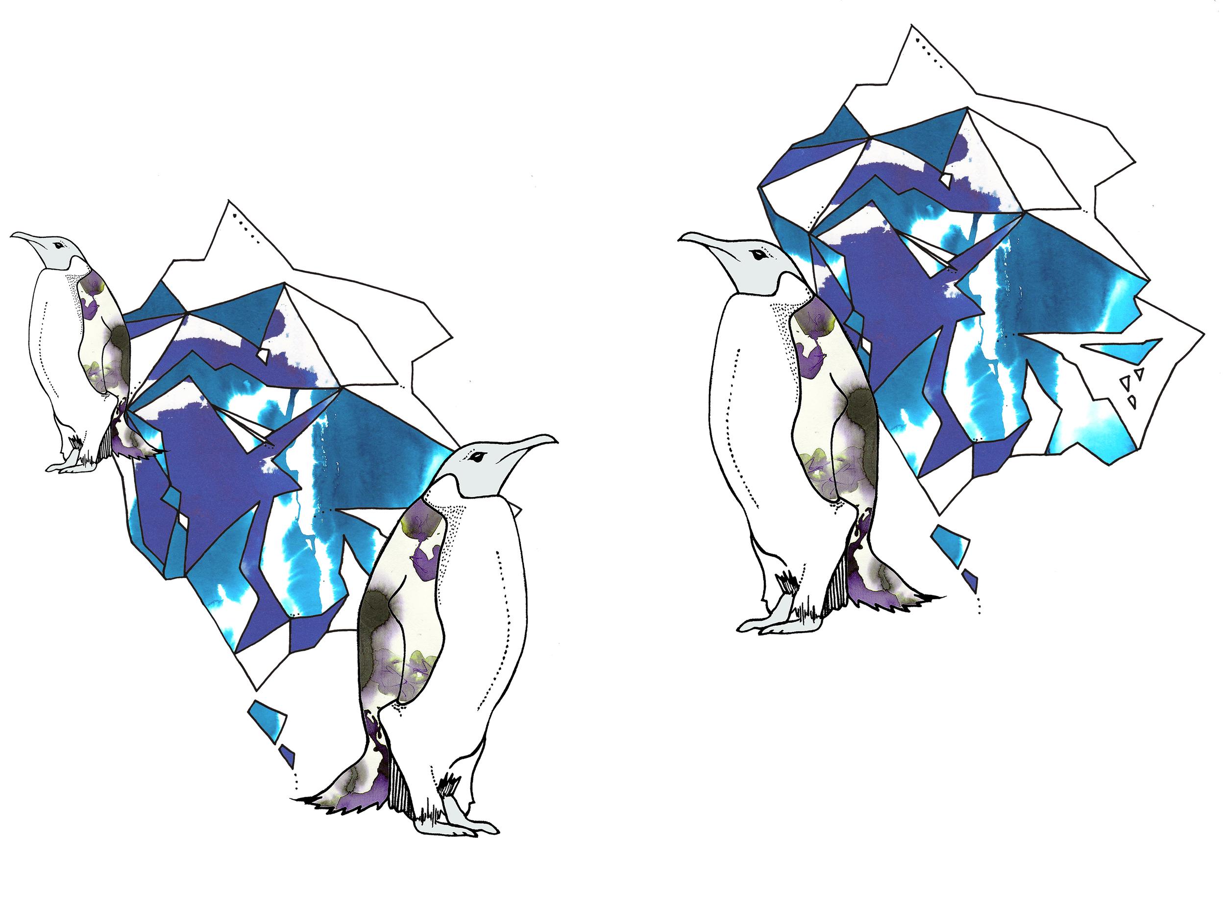THe penguins 2.jpg