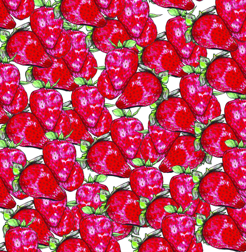 strawberries galore copy.jpg