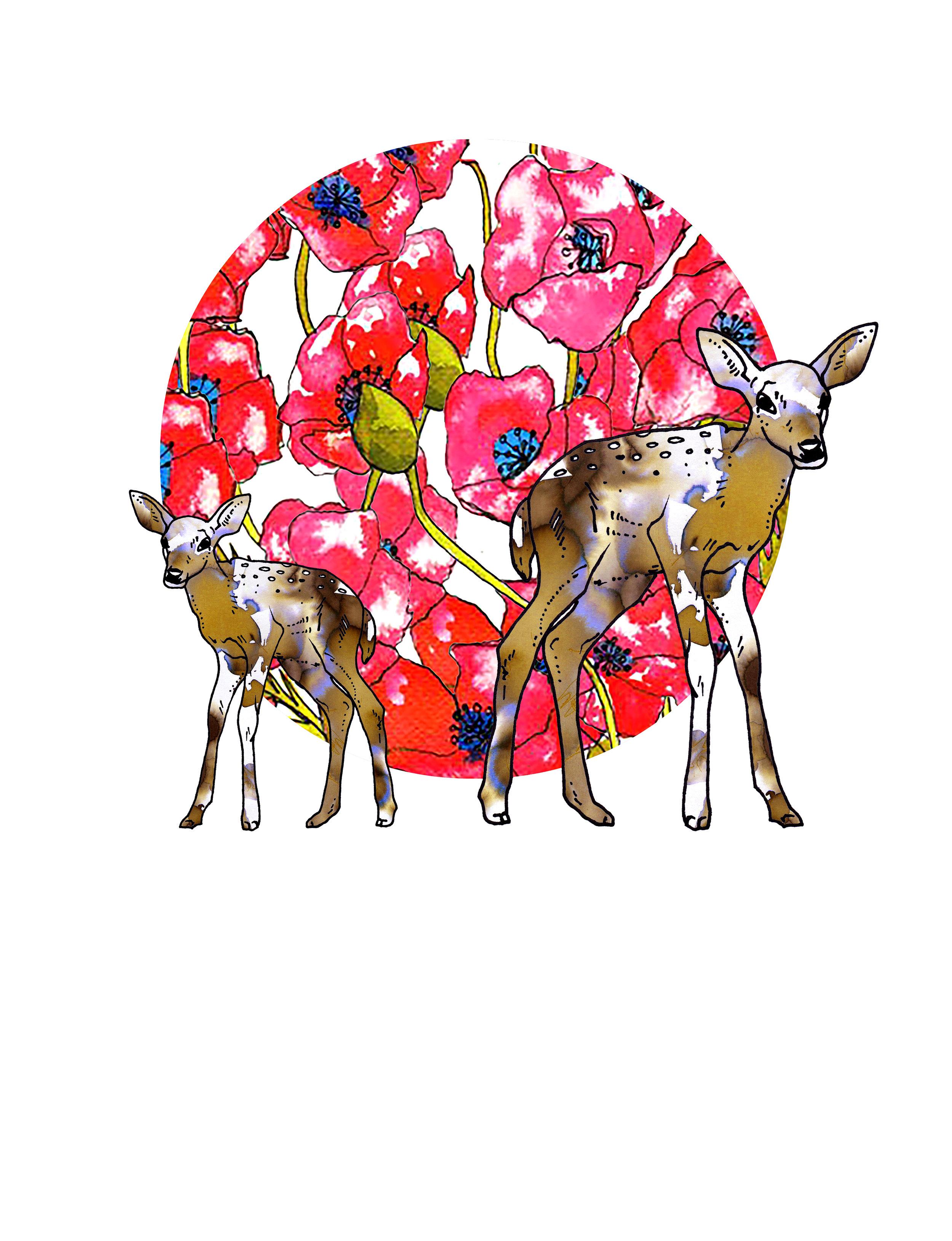 deer and poppy.jpg