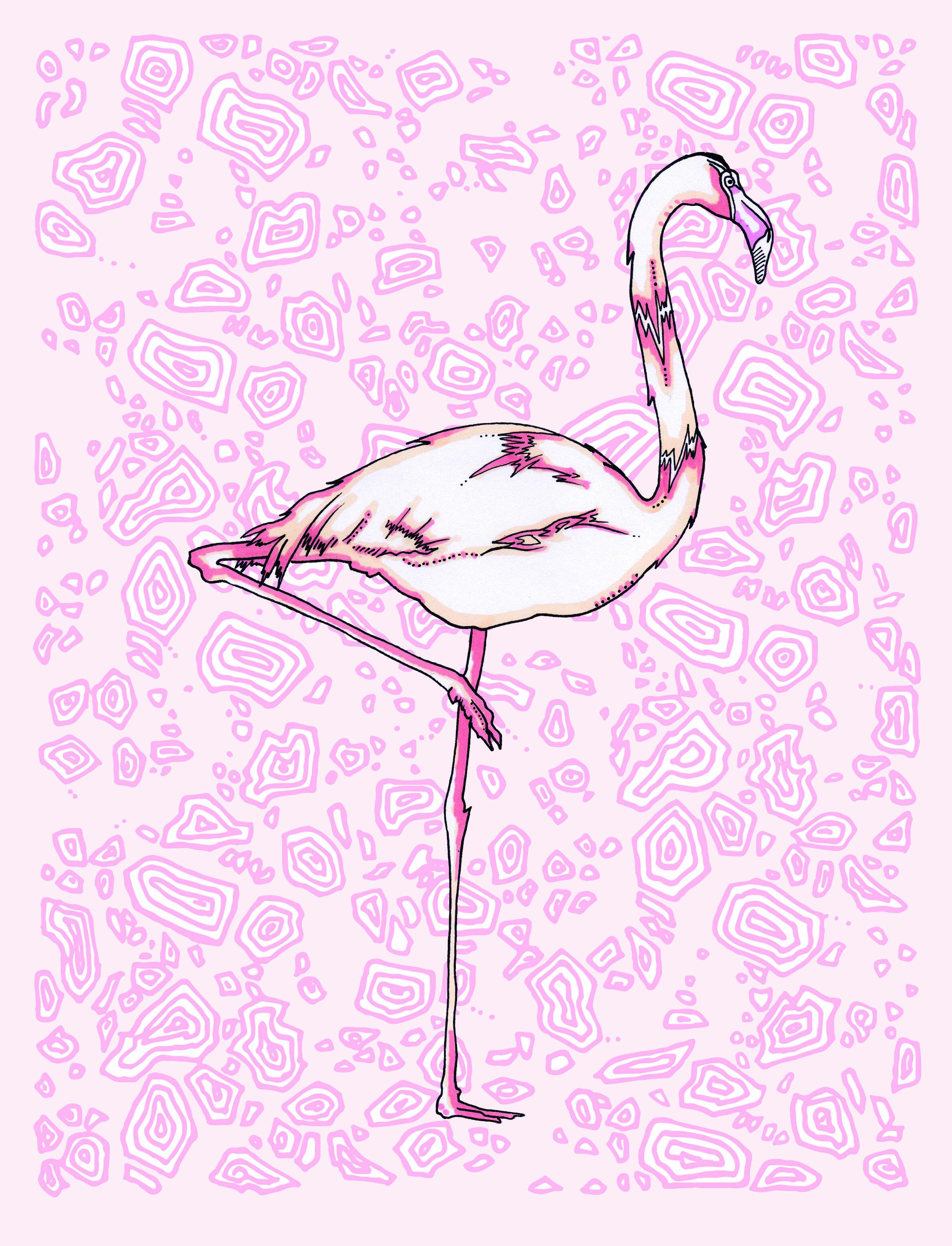 flamingo terrazzo.jpg