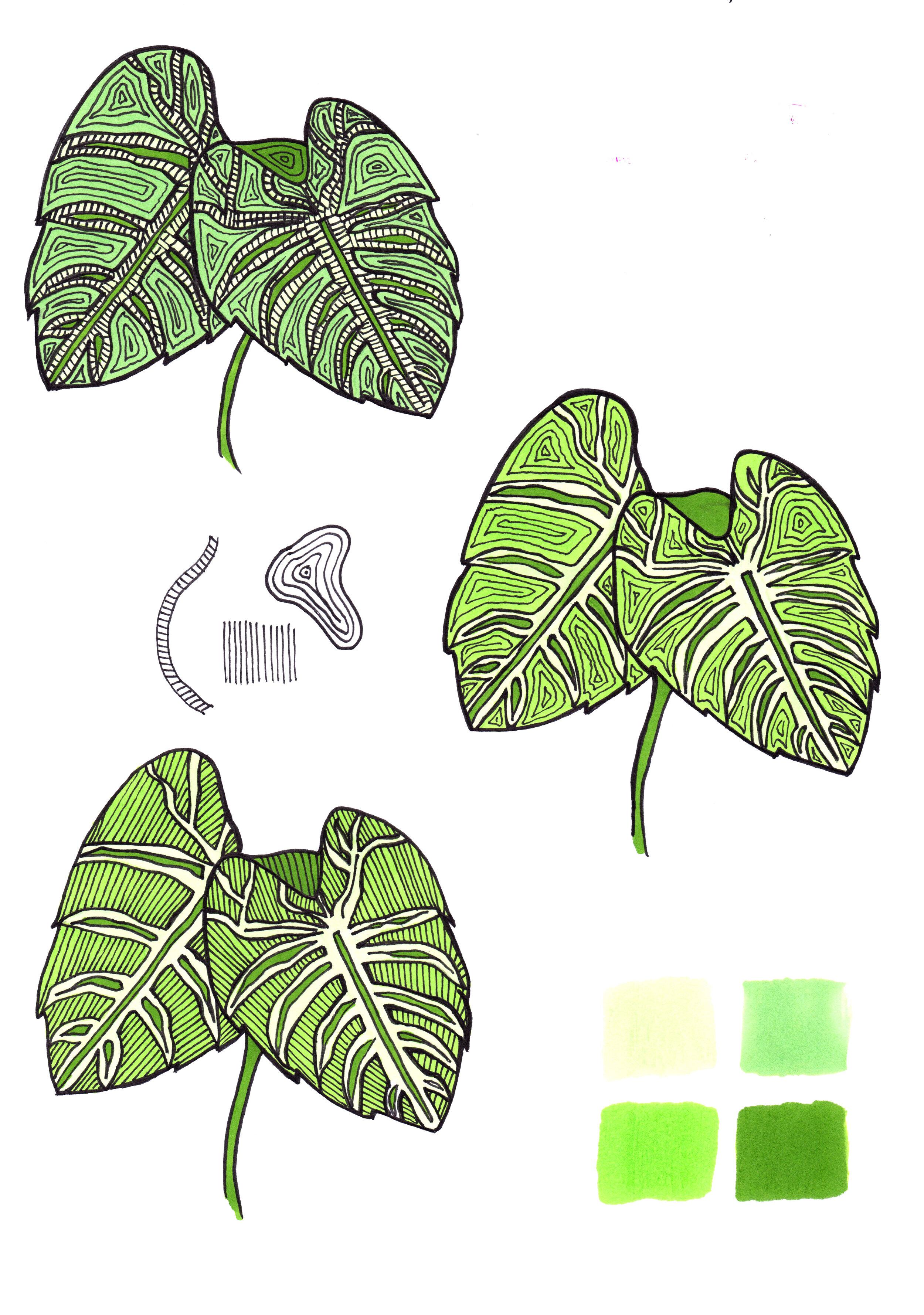 leaf test sheet.jpg