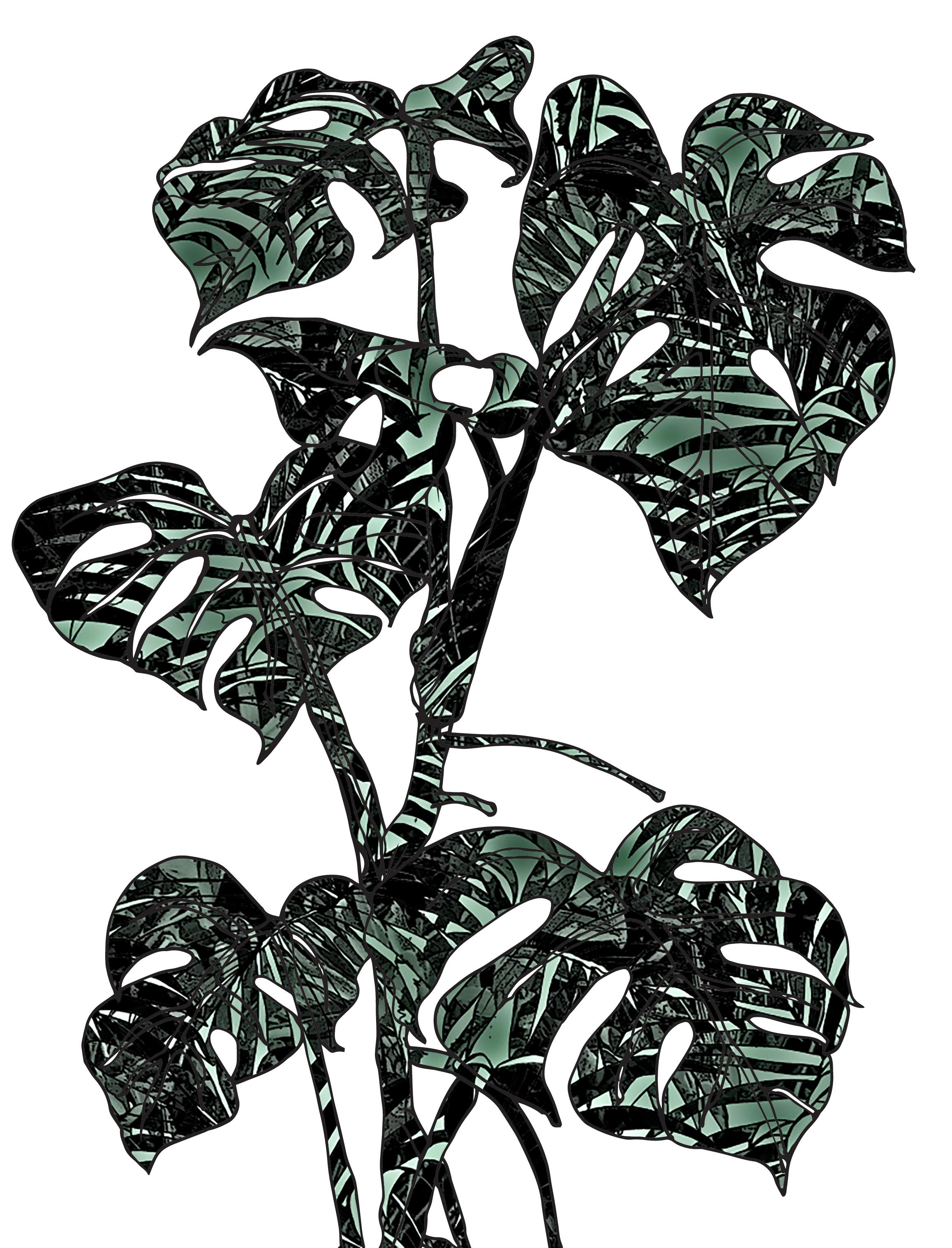 jungle camo.jpg