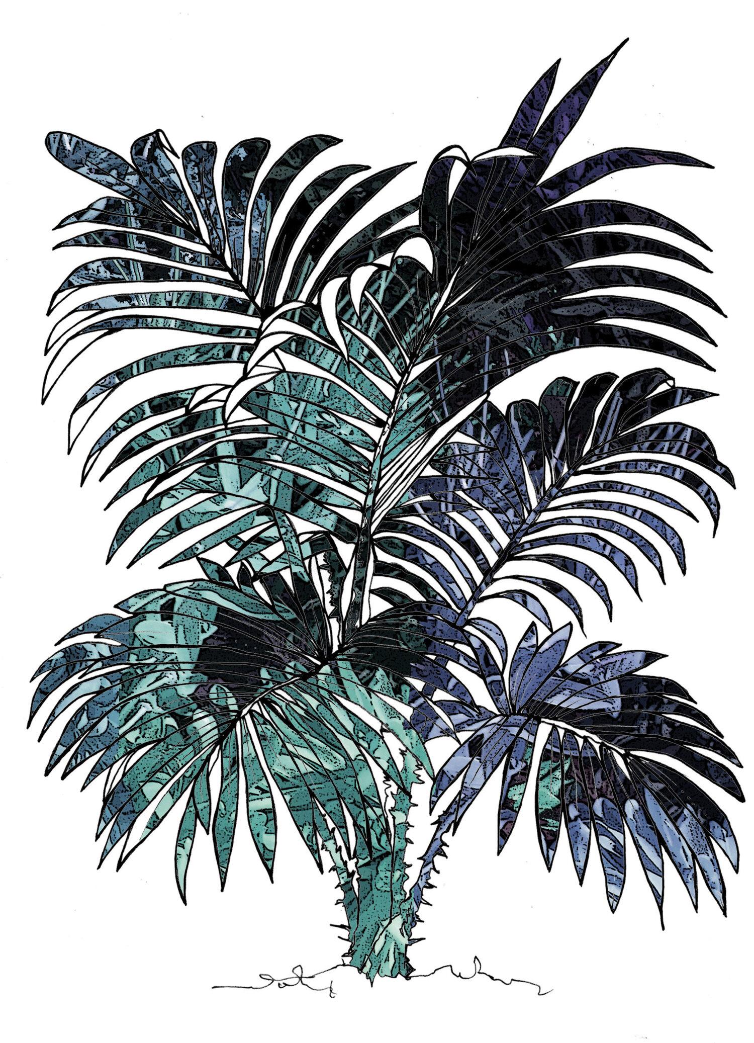 blue+jungle+copy-Recovered.jpg