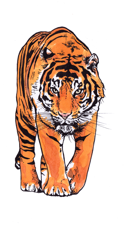 tiger stamp.jpg