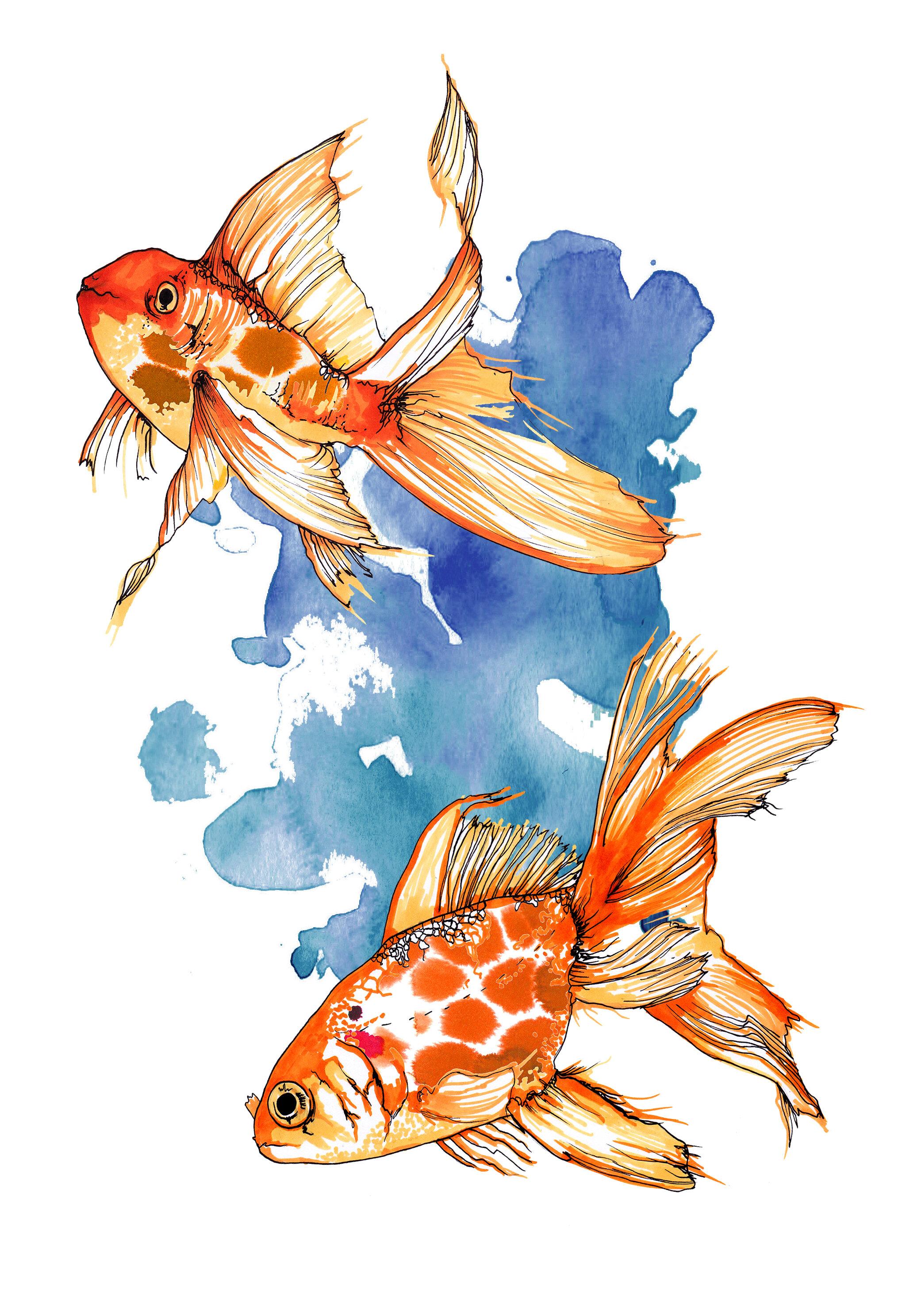 GOLD FISH KIDS.jpg