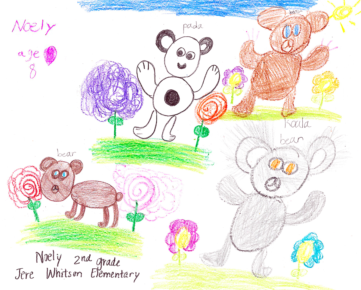 Congratulations to our 2019 Art Contest Winner, Noely, who drew every bear (and koala) featured in 2019's touring opera, BEAR HUG/ABRAZO DE OSO. Click art to expand.