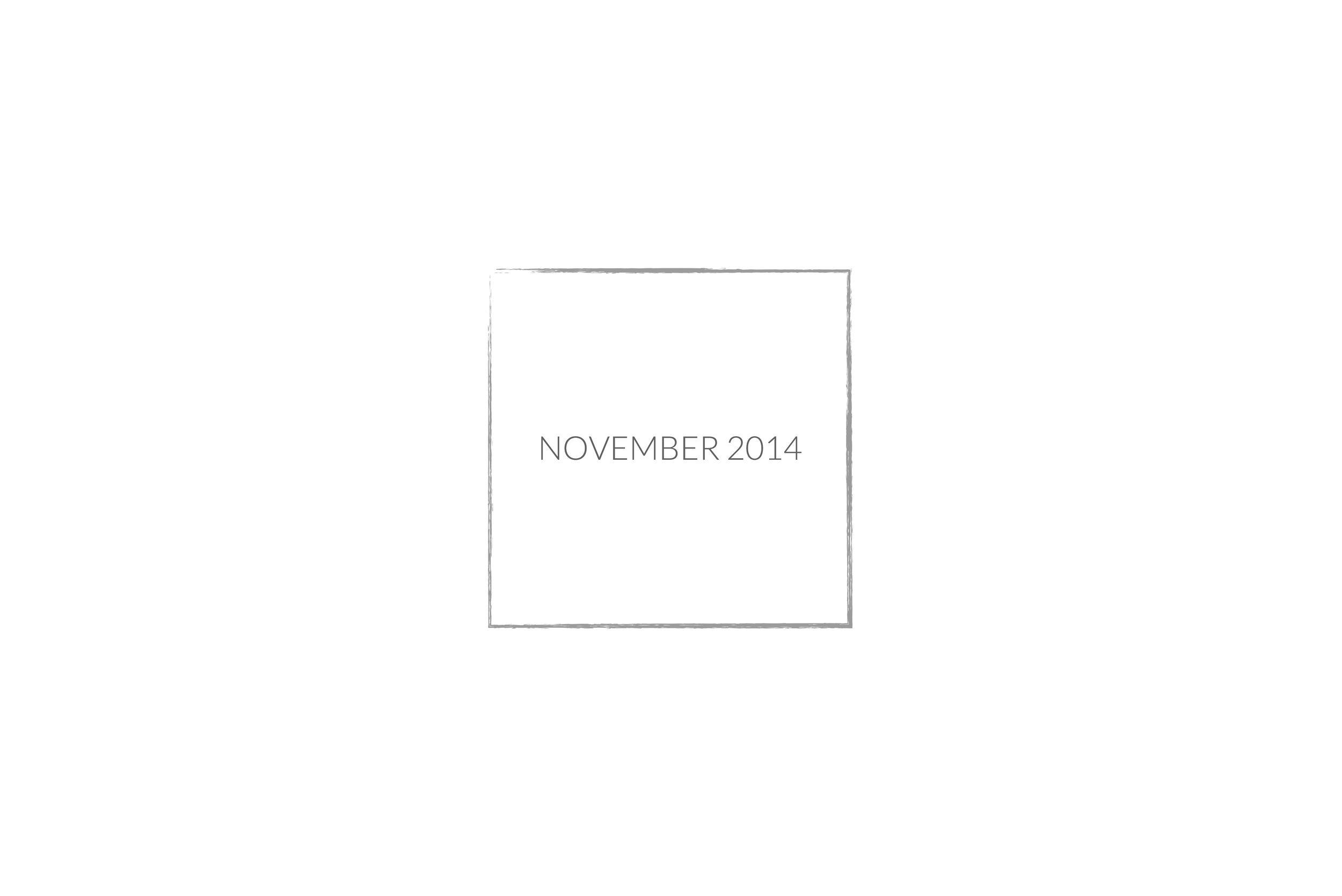 NOVEMBER 2014 SLIDE.jpg