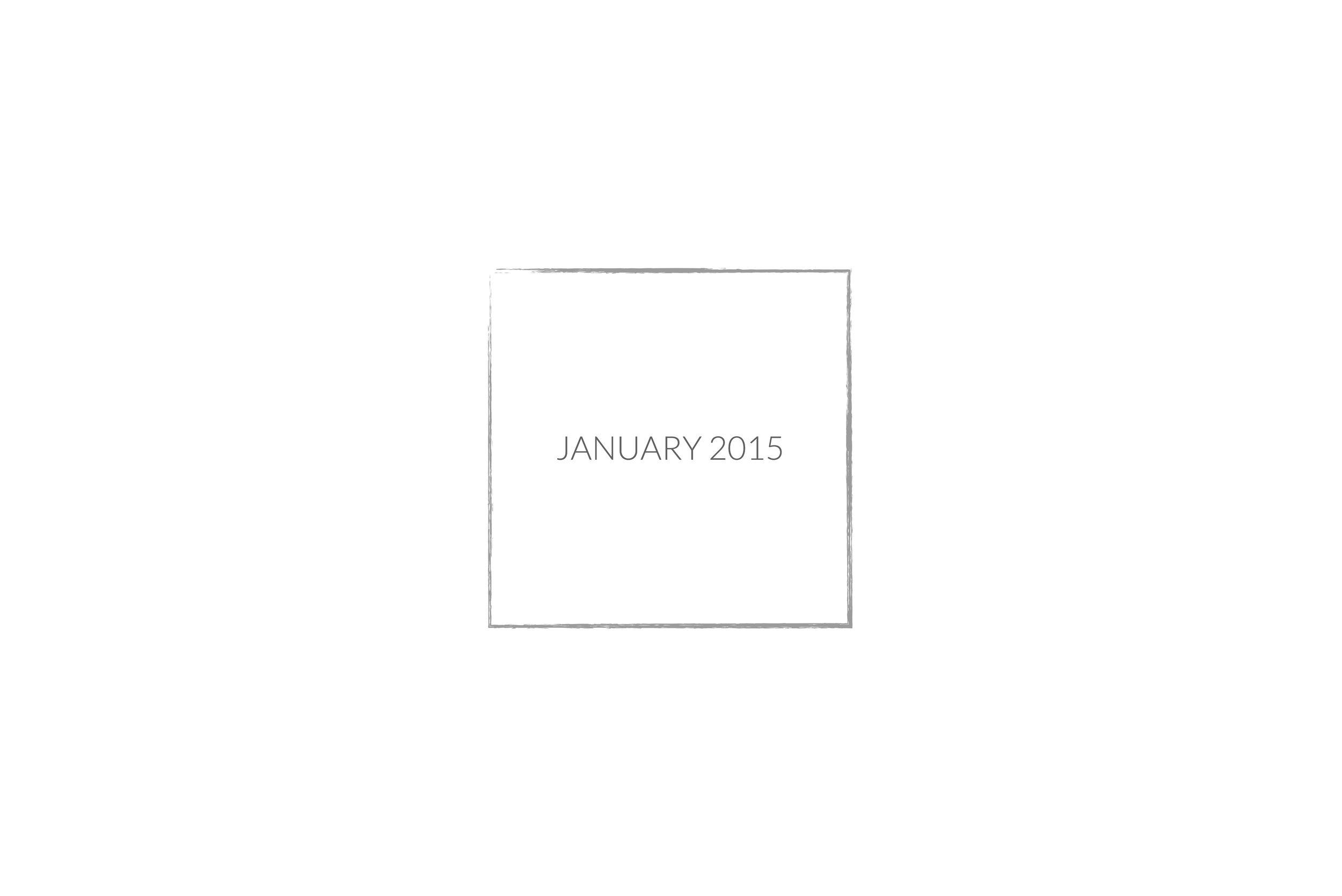 January 2015 slide.jpg