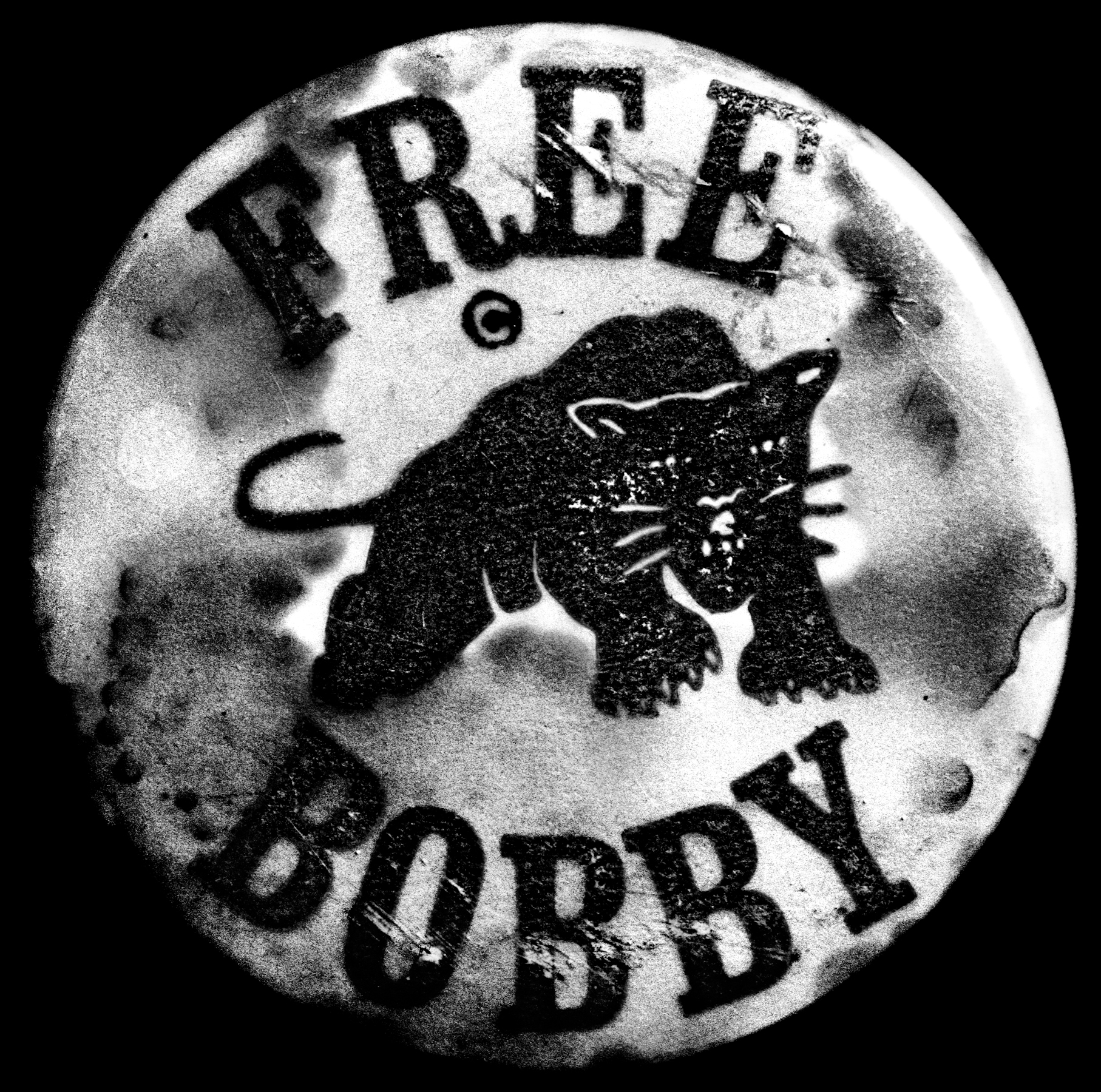 Free Bobby Button | Smithsonian Museum, Washington DC | 2009