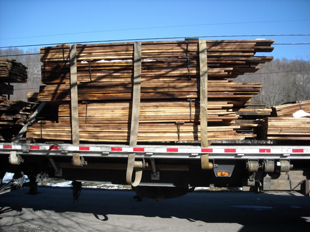 walnut-from-site-084.jpg