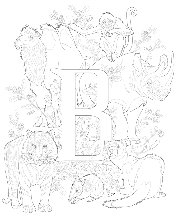 E is for Endangered, Letter B