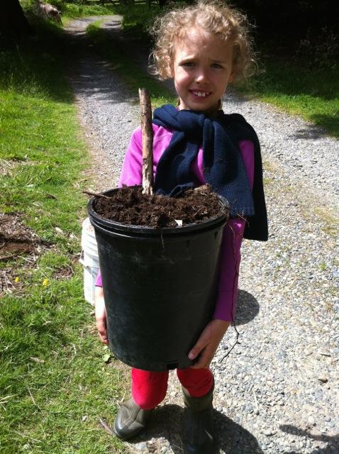 mulch haul