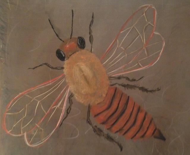 bee drawing.jpg
