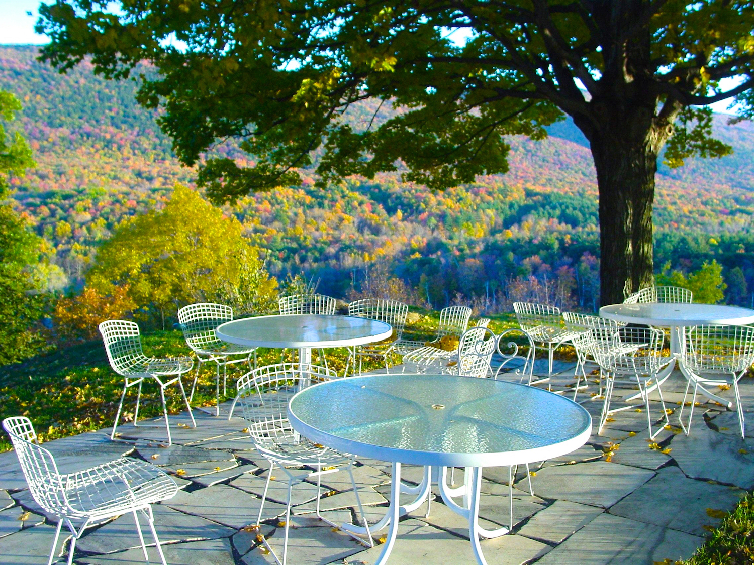 Al Fresco in the Fall.jpg