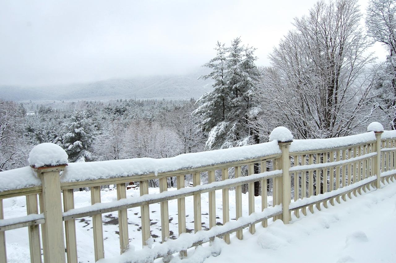 Winter Balacony View.jpg