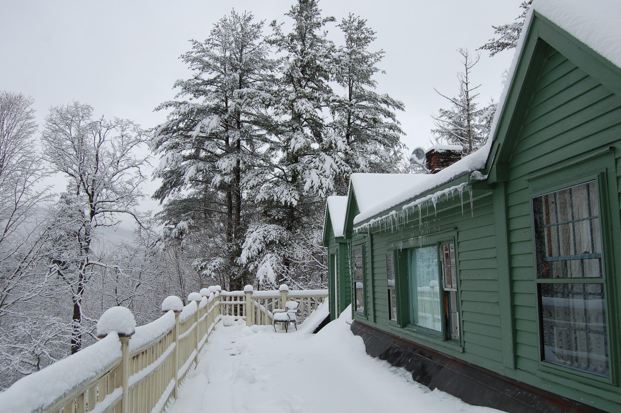 Winter3rdFloorTreeHouseView.jpg
