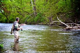 Fly fishing the Battenkill and the metowee rivers near manchester vermont