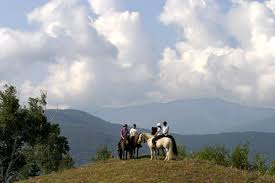 Horseback on the mountain trails of vermont