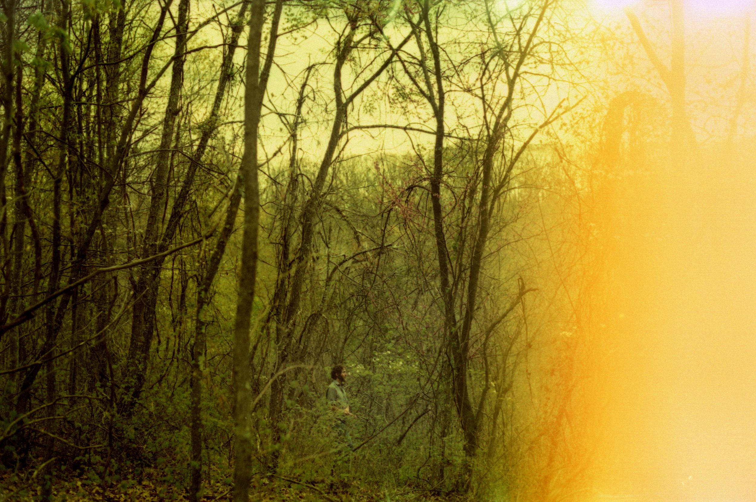 cwoods.jpg