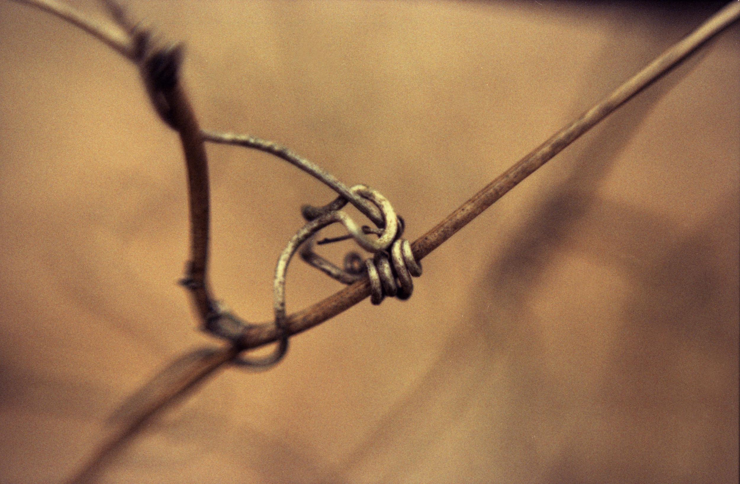 knot123.jpg